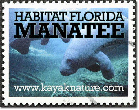 Habitat Florida Manatee - Giving manatee a helping hand